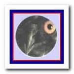 Цвет глаз ушастой совы в  молодом  возрасте  светло-желтый, а с годами становится оранжевым. Вместе с подвижными ушами глаза обеспечивают своеобразную мимику, которая даже ночью оказывает пугающее действие.